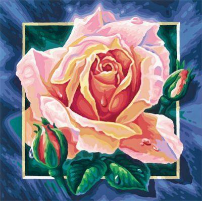malen nach zahlen schipper rosa rose blumen 40x40cm ebay. Black Bedroom Furniture Sets. Home Design Ideas