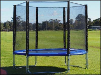 trampolin gartentrampolin 250 cm netz leiter u plane ebay. Black Bedroom Furniture Sets. Home Design Ideas