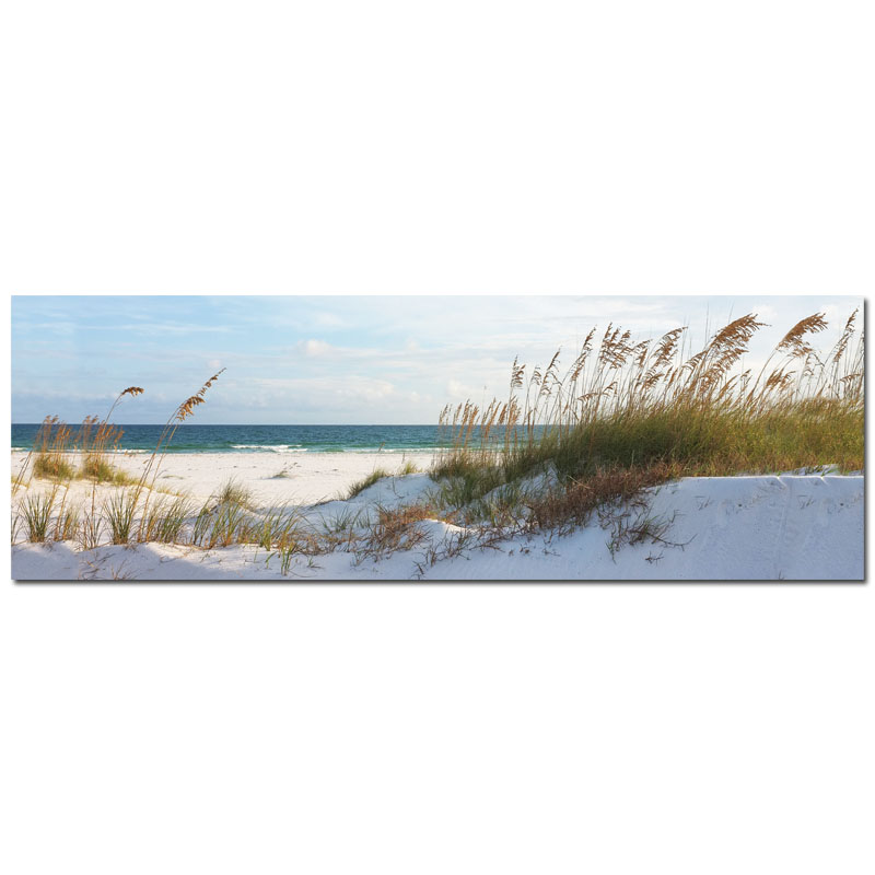50x150cm d ne sand meer canvas keilrahmenbild ebay. Black Bedroom Furniture Sets. Home Design Ideas