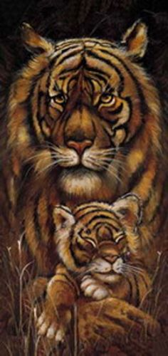 kunstdruck poster bild safari tiger hochformat 33x70 ebay. Black Bedroom Furniture Sets. Home Design Ideas