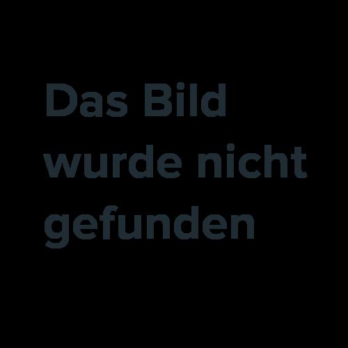 Deluxe Edelstahl Holz-Stahl Grill Grillwagen 2 Ablagen Landmann 11413