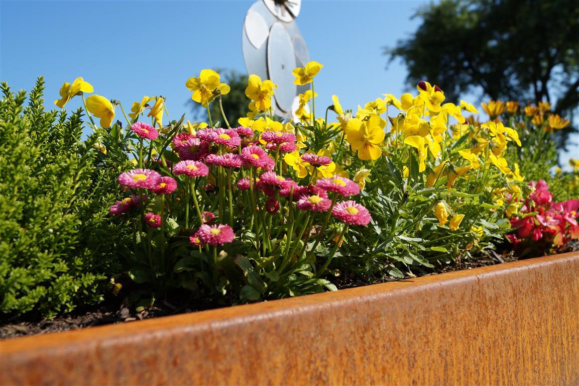 Gartenversand angebote auf Waterige