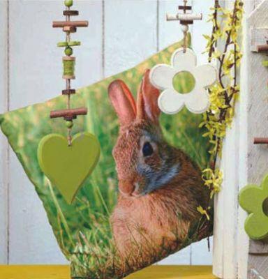 kissen gef llt fr hling ostern hase im gras fotodruck gr n creme 45x45 ebay. Black Bedroom Furniture Sets. Home Design Ideas