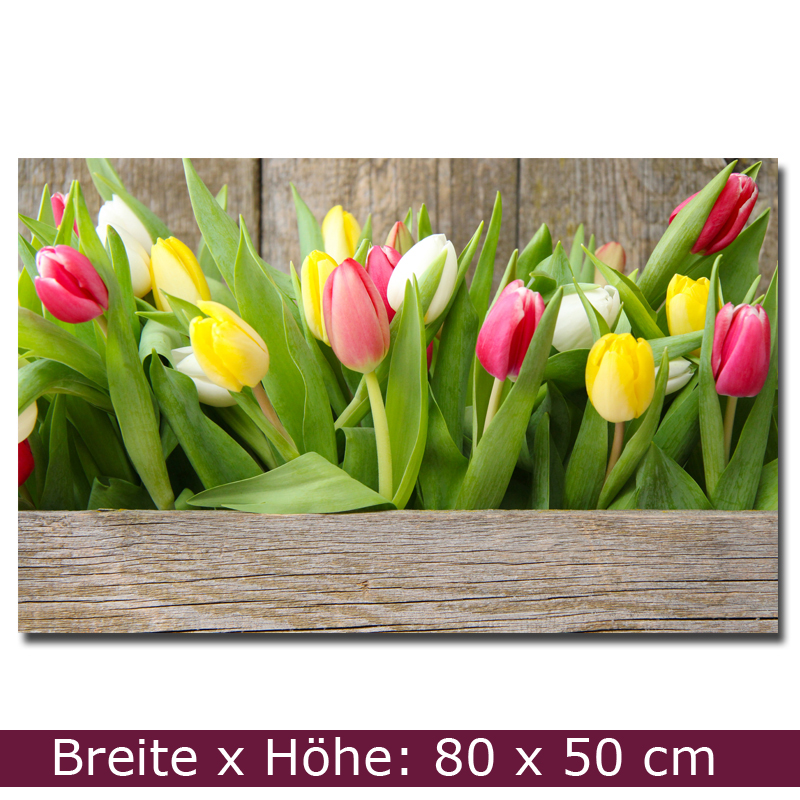 r ckwand nischenverkleidung panele k che tulpen 80 x 50 cm spritzschutz ebay. Black Bedroom Furniture Sets. Home Design Ideas