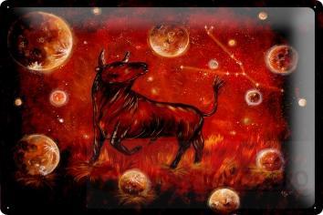 blech metall wand schild krakowski sternzeichen stier horoskop sternbild 20x30cm ebay. Black Bedroom Furniture Sets. Home Design Ideas