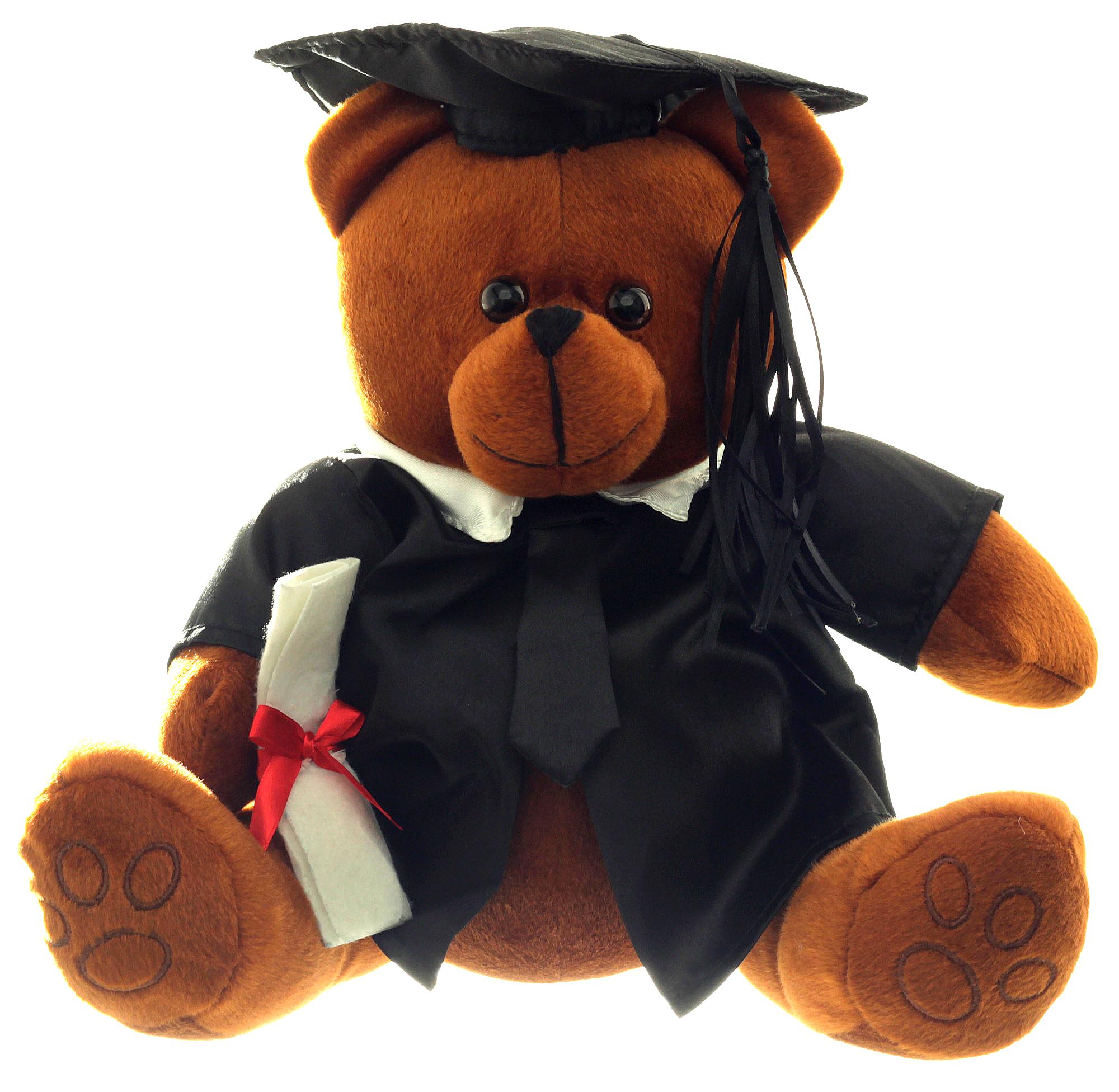 graduationsb r 32cm mit doktorhut und diplom geschenk zur bestandenen pr fung ebay. Black Bedroom Furniture Sets. Home Design Ideas